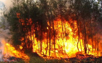 Fire, drought, heat: more records to topple?