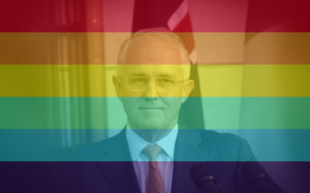 Missing: one spine. Please return to Malcolm Turnbull