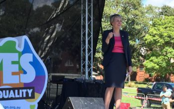 After SSM, what's next for Labor?