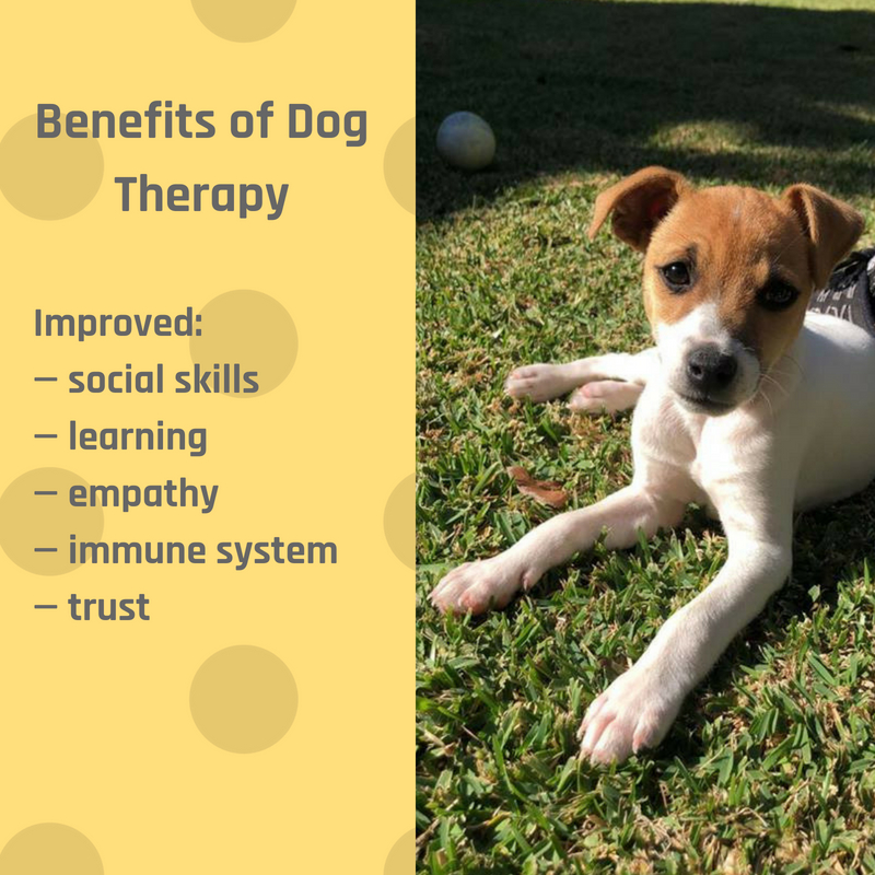 Benefits-of-Dog-Therapy-Include-1