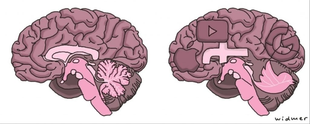 The graphic illustration of a human brain, filled with social media apps like Facebook, YouTube, Google and Twitter.